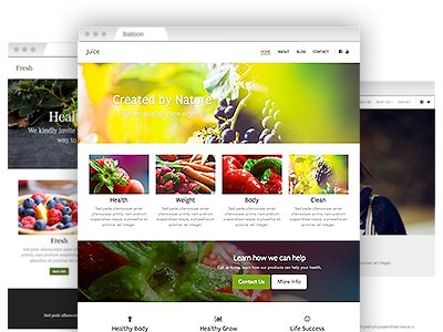 A set of easy–to–redesign website themes